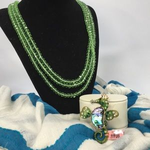 NWT Matching Necklace/Brooch